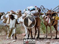 Mauritania 2002 7 8 - Hodh El Gharbi